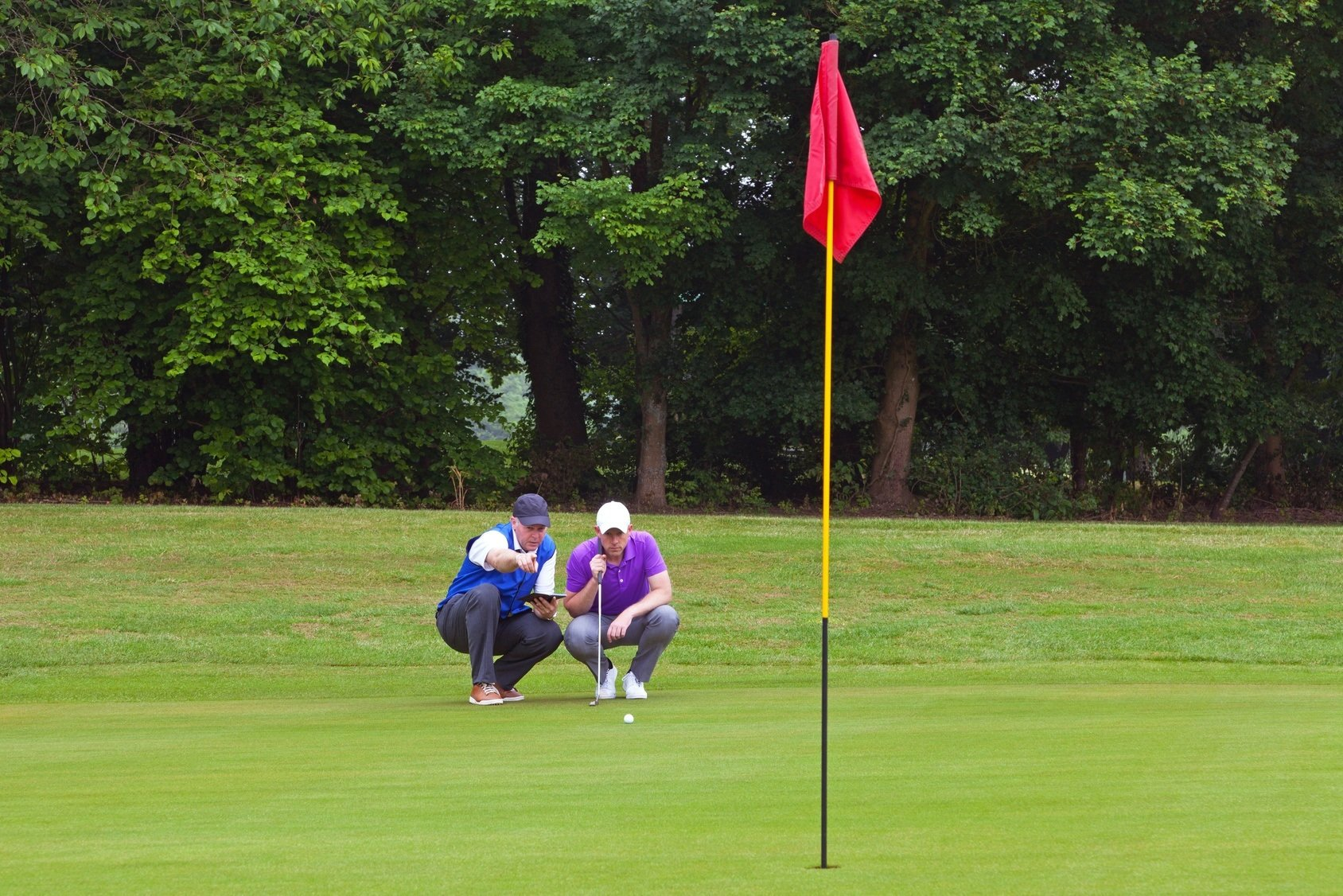 Foto vídeo golf online: el green